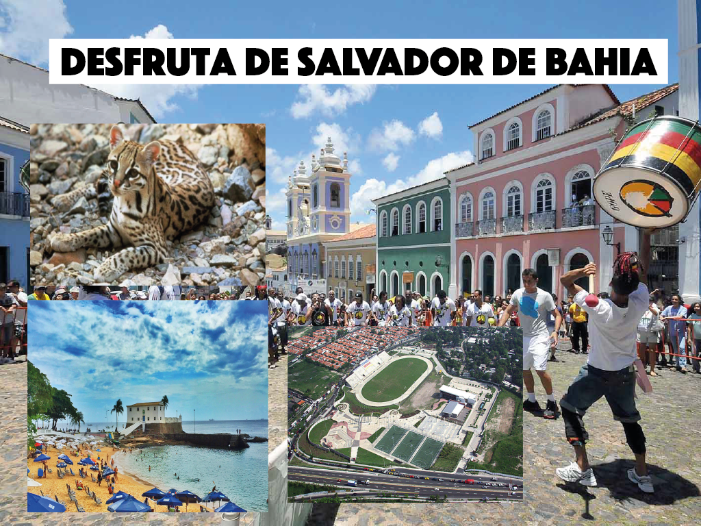 Salvador de Bahia, a cidade mais povoada do nordeste
